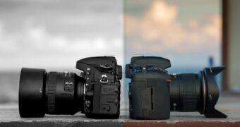 Should I Buy a Gray Market Camera?